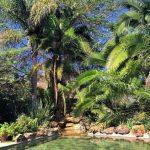 Kiangazi pool
